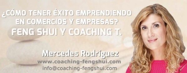 video conferencia feng shui coaching laboral